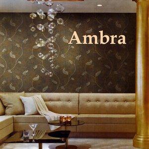 Ambra image