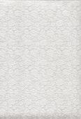 ВСПЕНЕННЫЙ ВИНИЛ (1,06х25) флизелин image