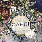 CAPRI image