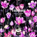 TULIPANI image